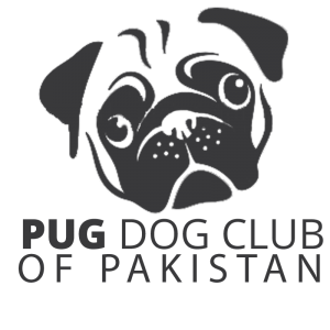 Pug Specialty Show Islamabad – 17th February 2019